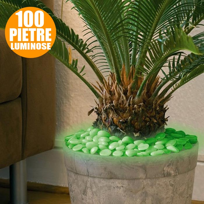 100 x Pietre Luminose da Decorazione Arredamento Esterno Glow in The Dark.